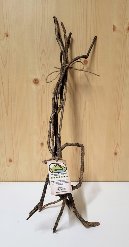 """New Cal Vine Branches (5 pack) - 24"""""""